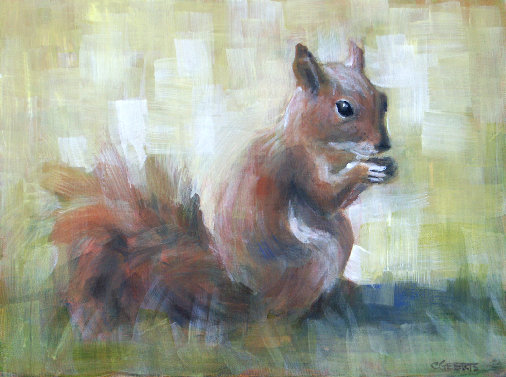 red-squirrel-9x12