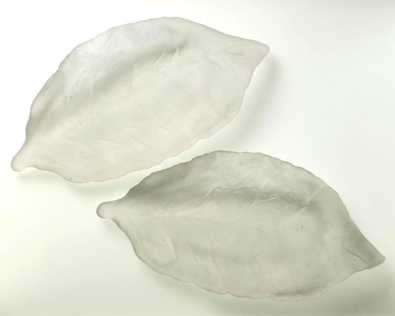 ghost leaves.jpg